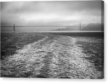 Foggy Top Canvas Print by Ken Kobe