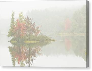 Foggy Weather And Fall Colors On Flying Pond Vienna Maine Canvas Print by Keith Webber Jr