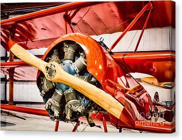 Fokker Dr.1 Canvas Print by Inge Johnsson