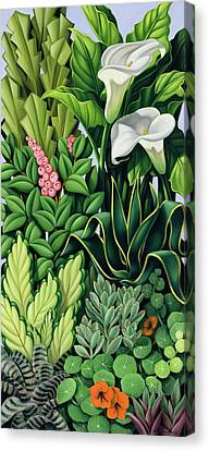 Foliage Canvas Print by Catherine Abel