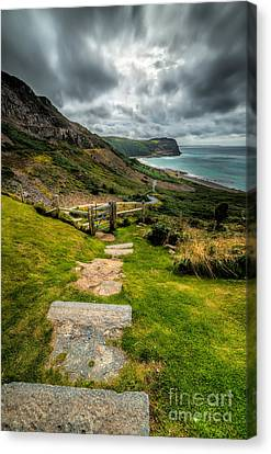Follow The Path Canvas Print by Adrian Evans