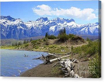 Following The Athabasca River Canvas Print by Teresa Zieba