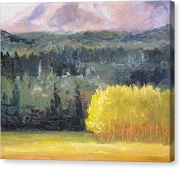 Foot Of The Mountain Canvas Print by Nancy Merkle