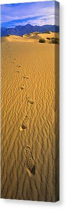 Footprints, Death Valley National Park Canvas Print by Panoramic Images