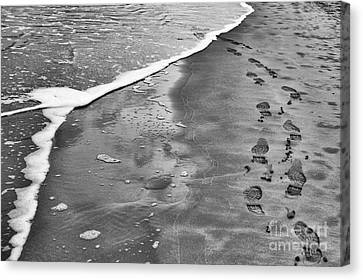 Footprints  Canvas Print by Tim Gainey