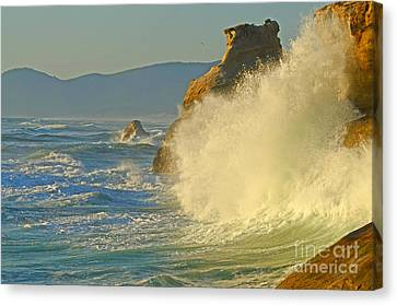Force Of Nature Canvas Print by Nick  Boren