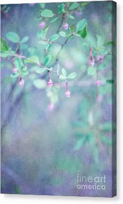 Forest Bells Canvas Print by Priska Wettstein