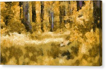 Forest Floor In Autumn Canvas Print by Dan Sproul