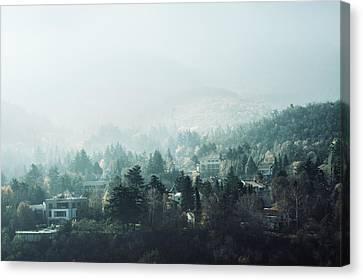 Forest Canvas Print by Ivan Vukelic