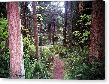 Forest Path Canvas Print by Christopher Bage