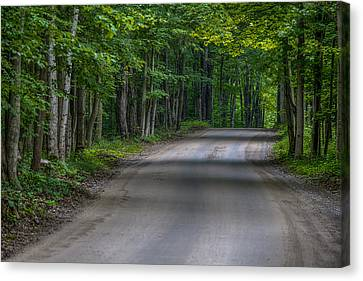 Forest Road Canvas Print by Sebastian Musial