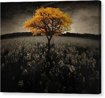 Forever You Canvas Print by Brett Pfister