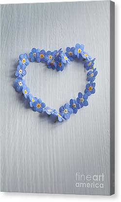 Forget Me Not Heart Canvas Print by Jan Bickerton