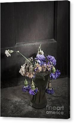 Forgotten Flowers Canvas Print by Svetlana Sewell