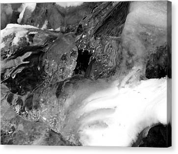 Formed Ice Skull Canvas Print by Thomas Samida