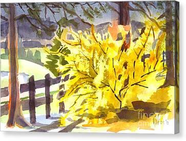 Forsythia In Springtime Canvas Print by Kip DeVore