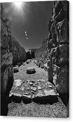 Fortress Of Masada Israel 2 Canvas Print by Mark Fuller