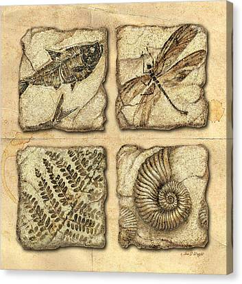 Fossils Canvas Print by JQ Licensing