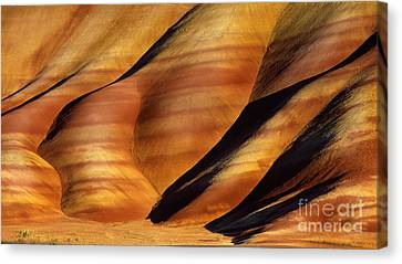 Fossilscape Canvas Print by Inge Johnsson