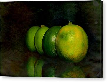 Four Limes Canvas Print by Toppart Sweden