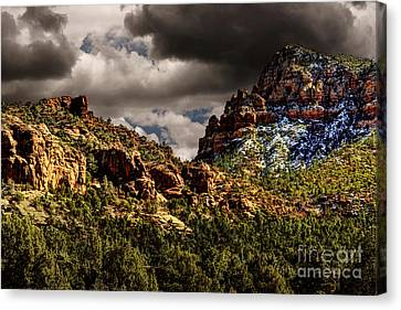 Four Seasons Canvas Print by Jon Burch Photography