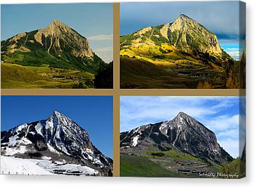 Four Seasons Of Mt. Crested Butte Canvas Print by Mike Schmidt