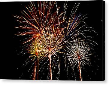Fourth Of July Fireworks  Canvas Print by Saija  Lehtonen