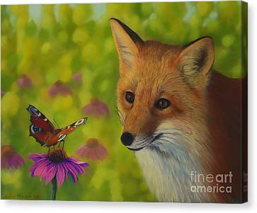 Fox And Butterfly Canvas Print by Veikko Suikkanen