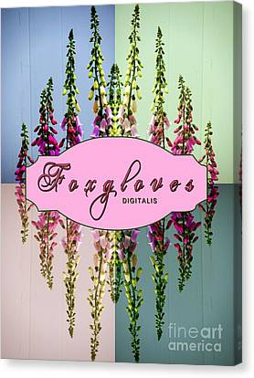 Foxgloves Times 4 Canvas Print by Margaret Newcomb