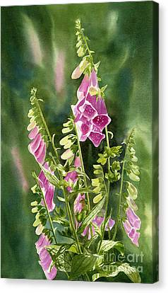 Foxgloves With Background Canvas Print by Sharon Freeman