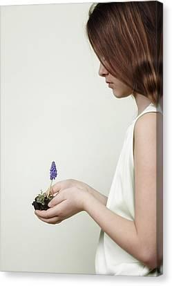 Fragile Spring Canvas Print by Joana Kruse