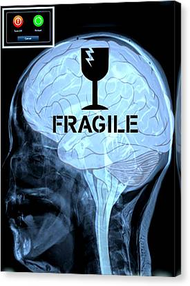 Fragile Substance Canvas Print by Paulo Zerbato