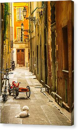 France - Nice - The Little Things Canvas Print by Vivienne Gucwa