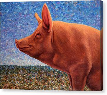 Free Range Pig Canvas Print by James W Johnson