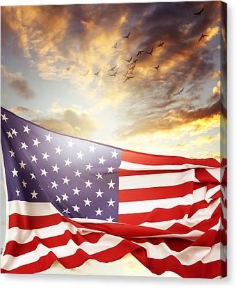 Freedom Canvas Print by Les Cunliffe