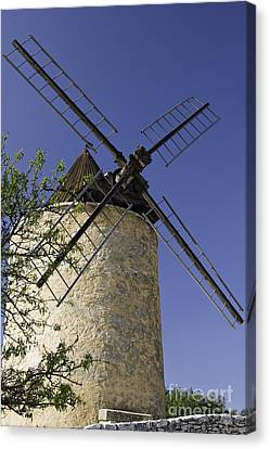 French Moulin Canvas Print by Bob Phillips