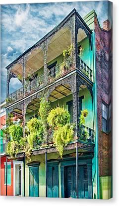French Quarter Ferns Canvas Print by Brenda Bryant