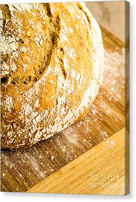 Fresh Baked Loaf Of Artisan Bread Canvas Print by Edward Fielding