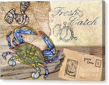 Fresh Catch Blue Crab Canvas Print by Paul Brent