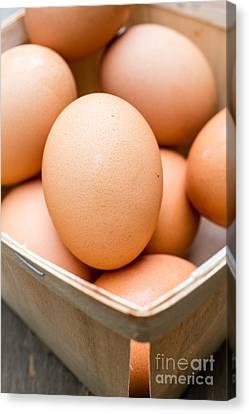 Fresh Eggs Canvas Print by Edward Fielding