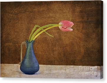 Fresh From The Garden Canvas Print by Alana Ranney