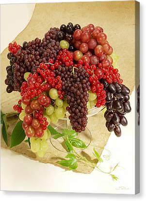 Fresh Grapes  Canvas Print by Iris Richardson