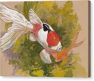Friendly Fantail Canvas Print by Tracie Thompson