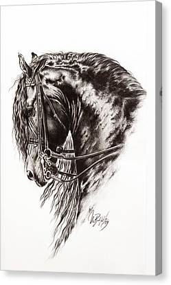 Friesian Horse Canvas Print by Art Imago