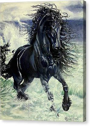 Friesian Storm Canvas Print by Sion Shadd