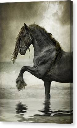 Friesian Surf  Canvas Print by Fran J Scott