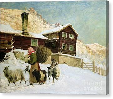 From Vaga Canvas Print by Gustav Wentzel
