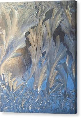 Frost On The Window Pane Canvas Print by Joy Nichols