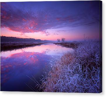 Frosty Sunrise Canvas Print by Ray Mathis