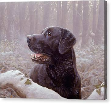 Frozen Breath Canvas Print by John Silver